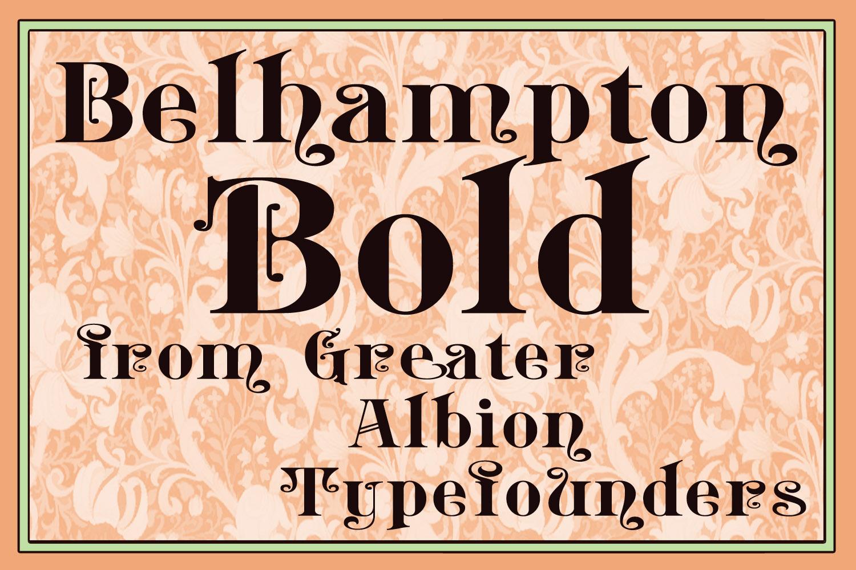 Belhampton Bold example image 1