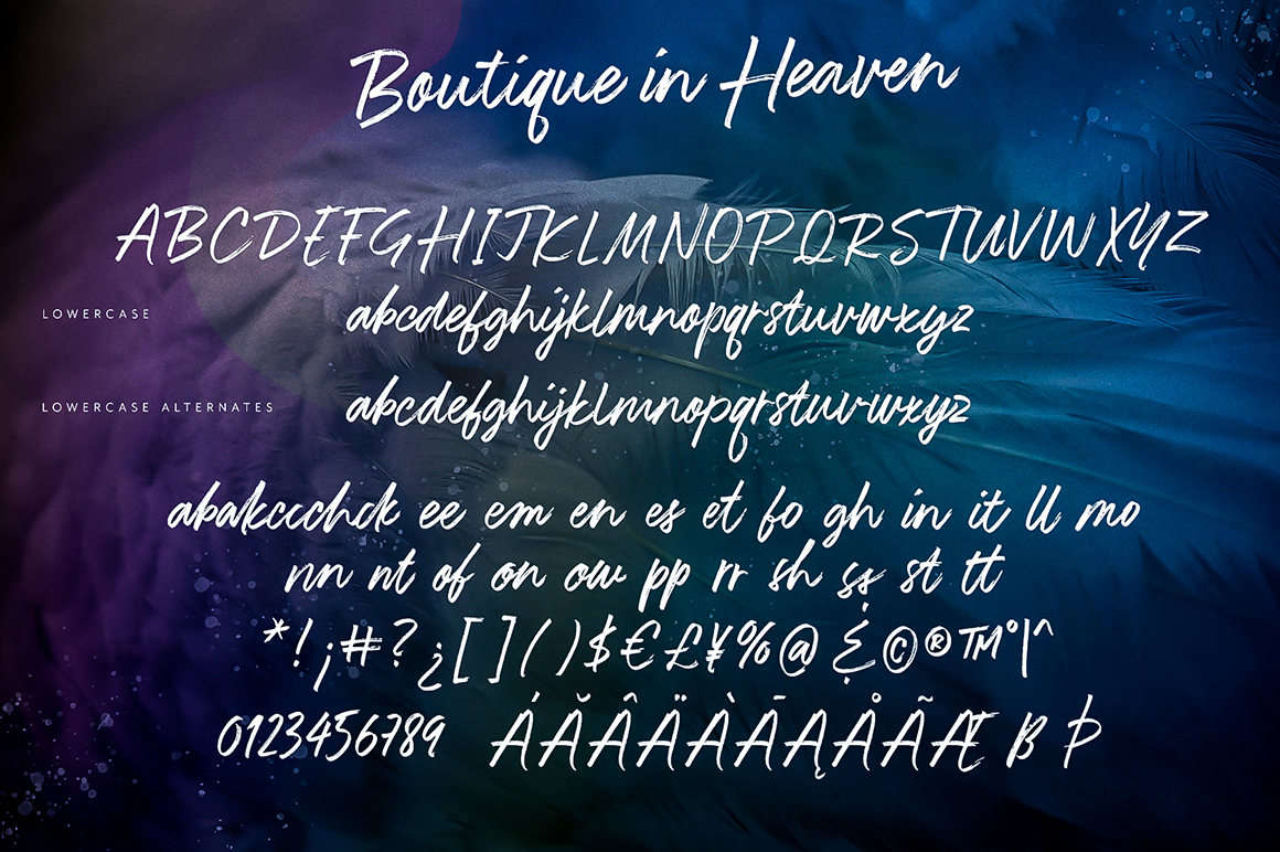 Boutique in Heaven Font example image 11
