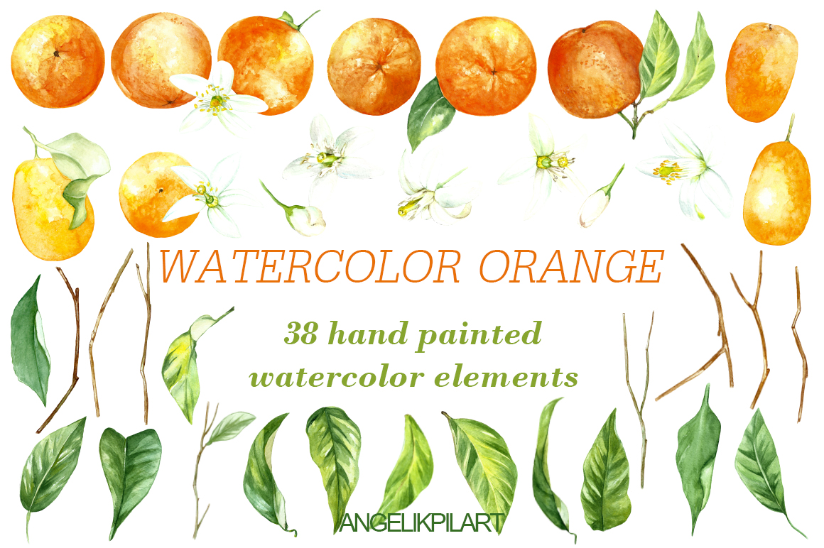 watercolor orange fruit illustration example image 2
