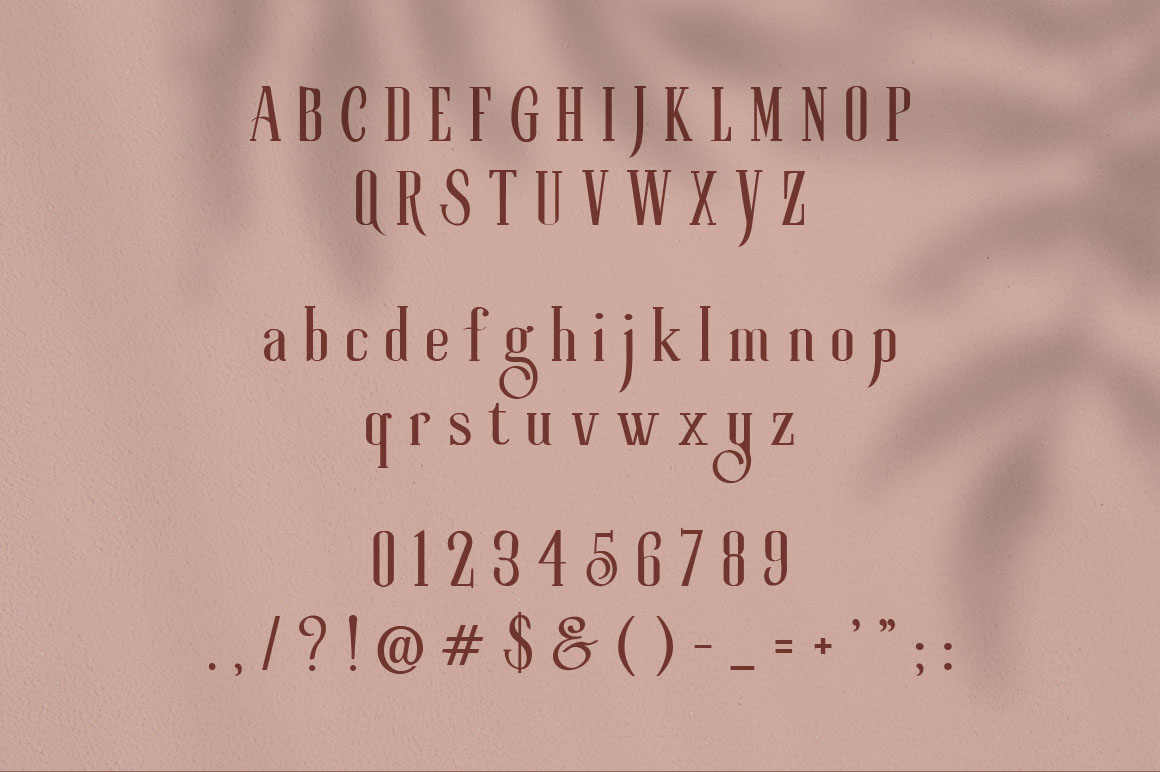 Roller Coaster Elegant Serif Extra example image 19