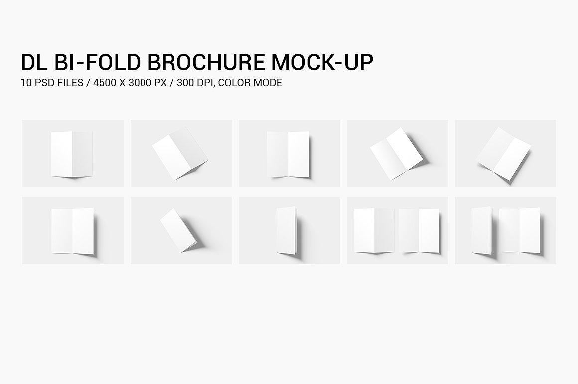 DL Bi-fold Brochure Mock-Up example image 13