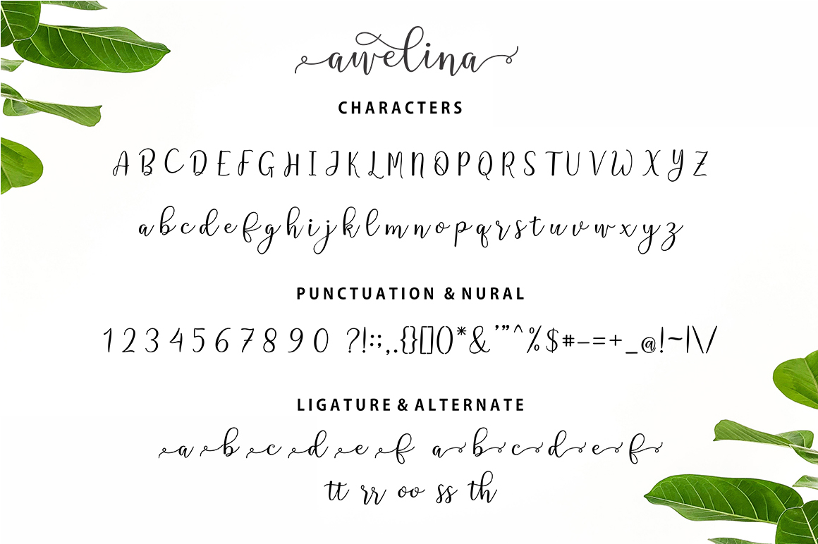 Awelina Script example image 7