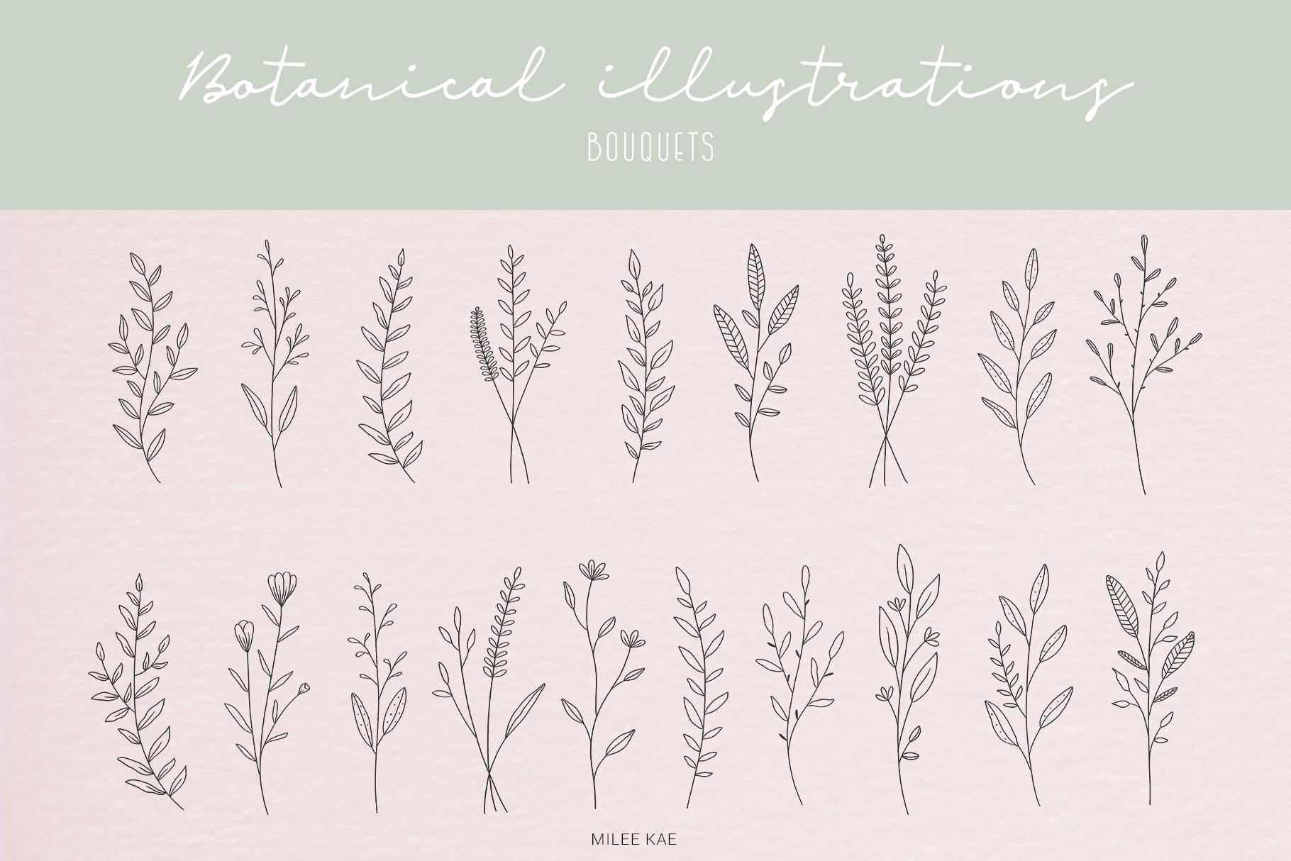 40 Modern Botanical Illustrations example image 2