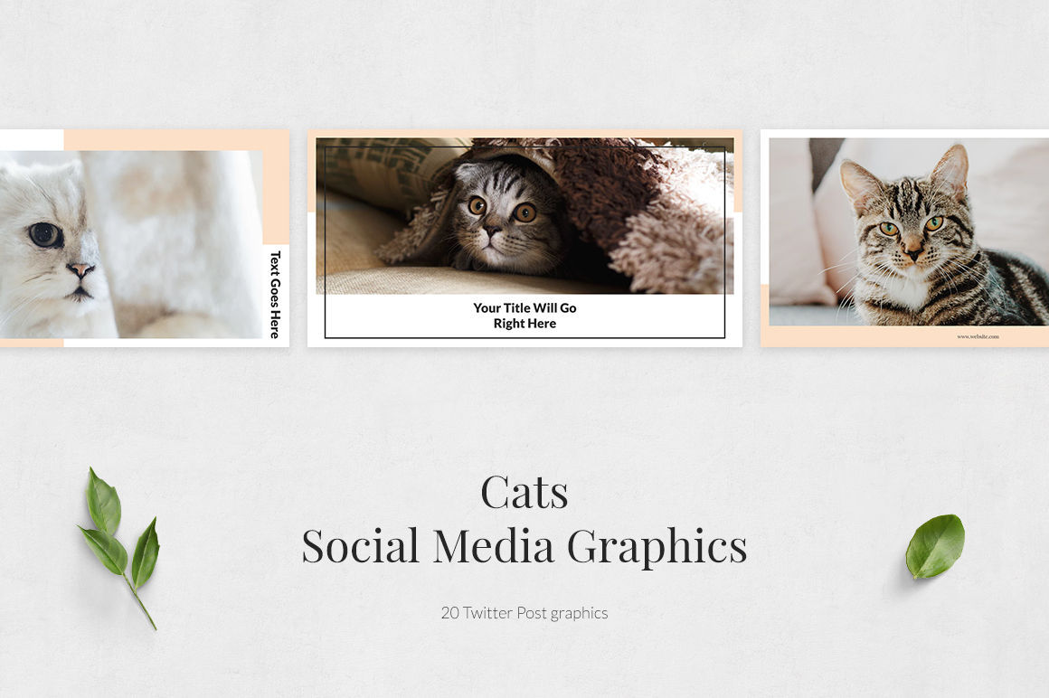 Cats Twitter Posts example image 2