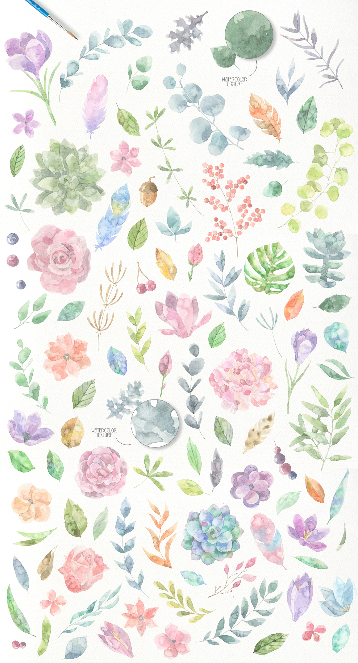Floristic Watercolor Collection example image 4