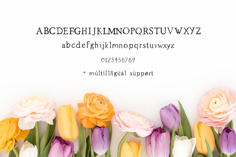 Spring Market - Rustic Serif Font example image 9