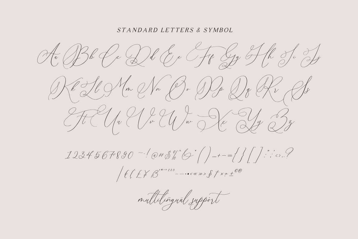 Simplicity Angela - Calligraphy Font example image 11