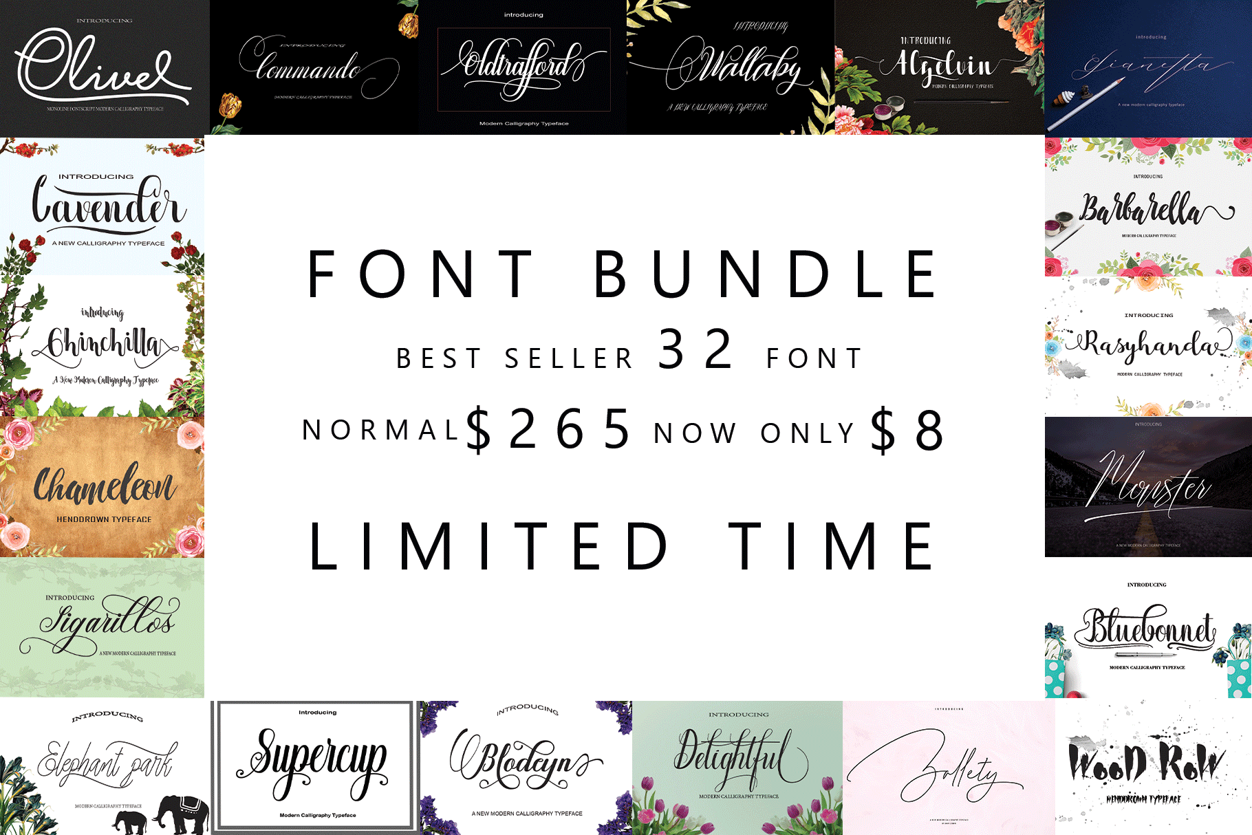 FONT BUNDLES COLECTION example image 1