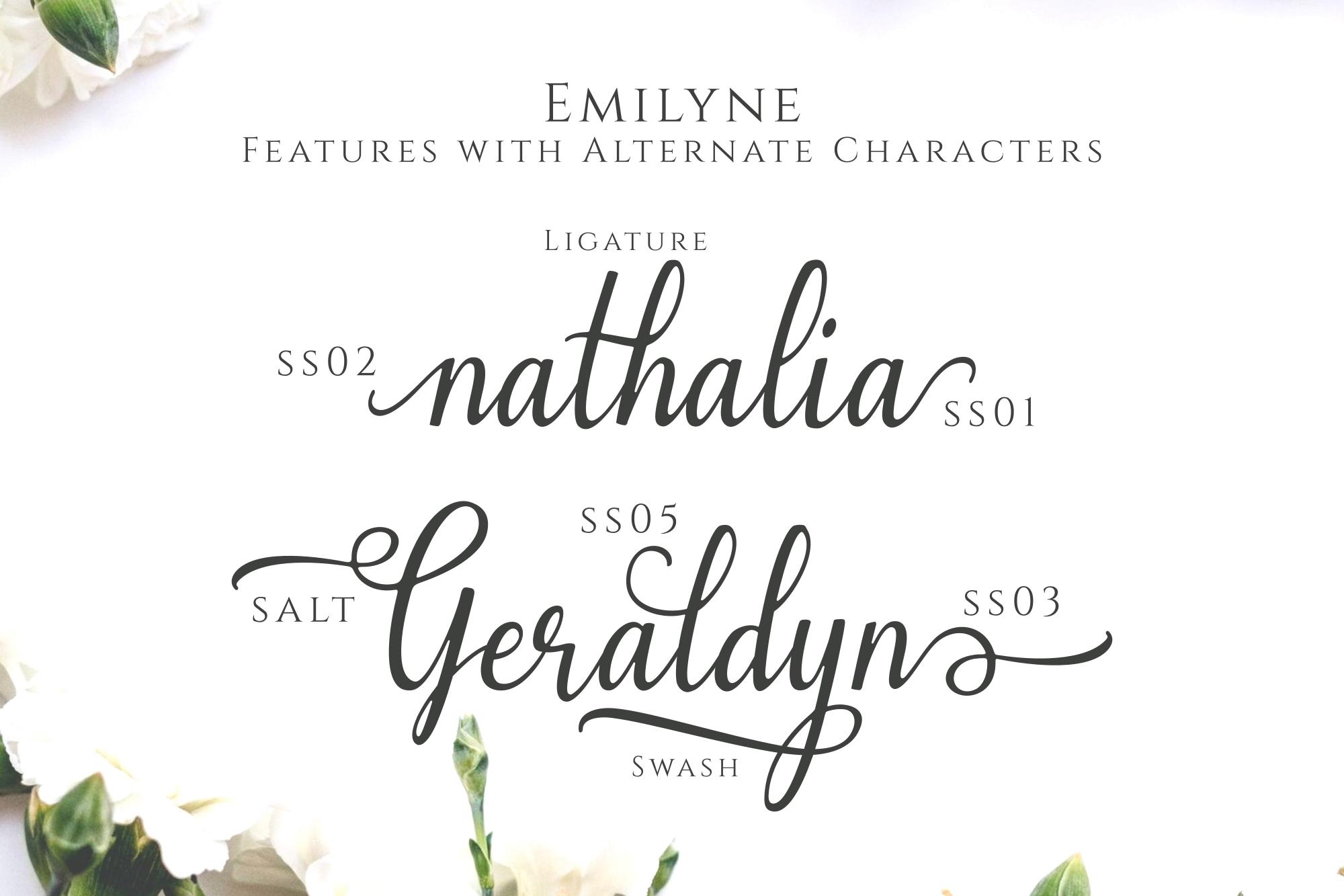 Emilyne example image 2