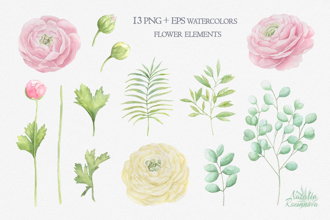 Watercolor ranunculus example image 2