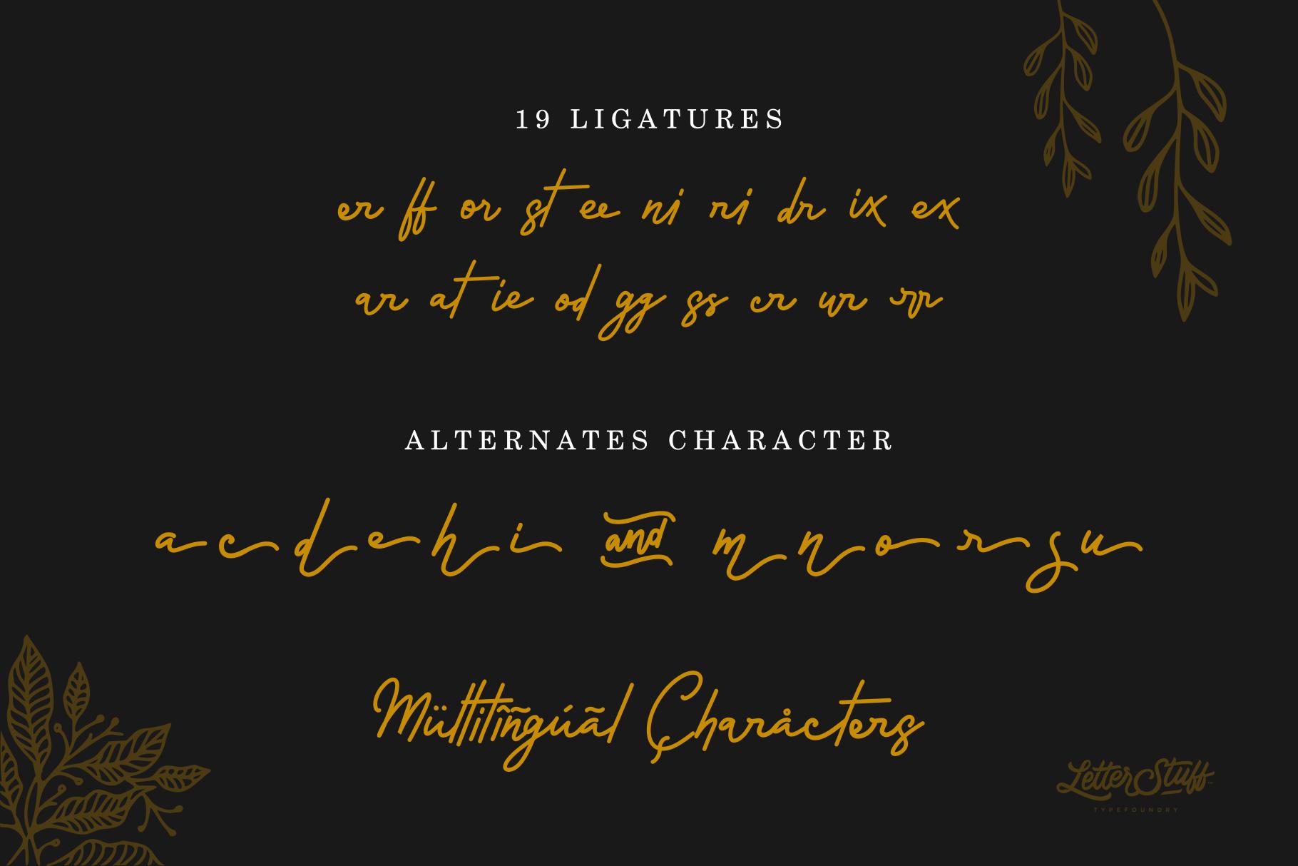 Rossela Signature Font & Extras example image 7