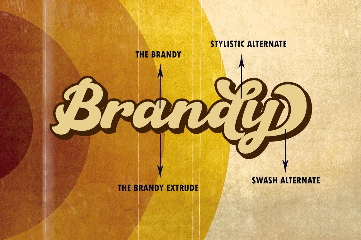 The Brandy Bold Retro Script example image 8