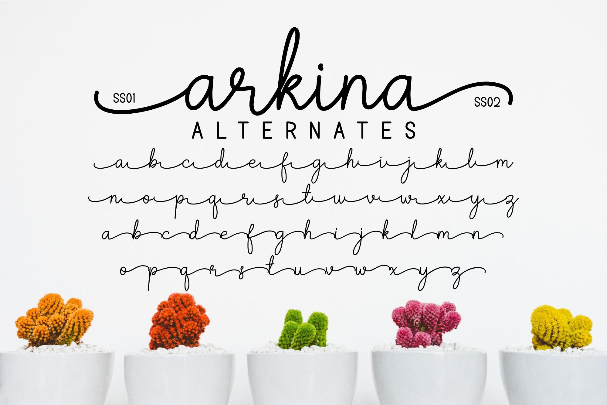 Arkina Duo example image 8