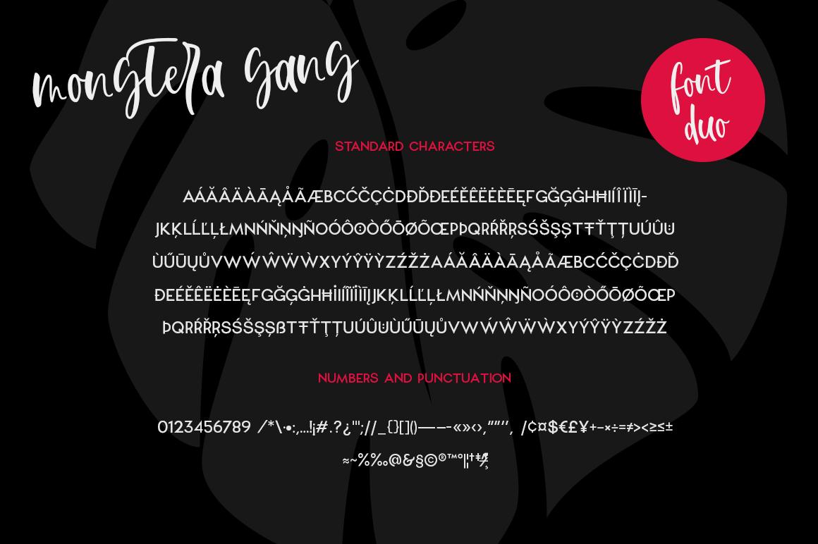 Monstera Deliciosa Font Duo example image 10