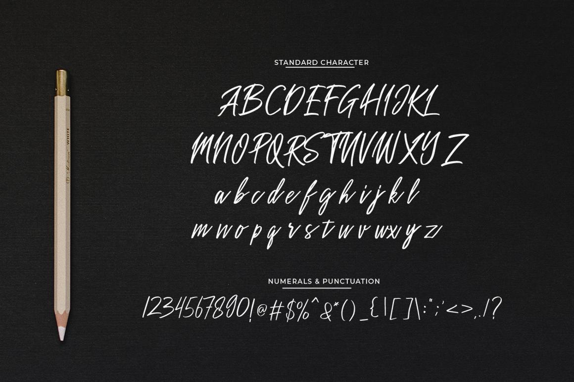Sakoda Signature Font example image 7