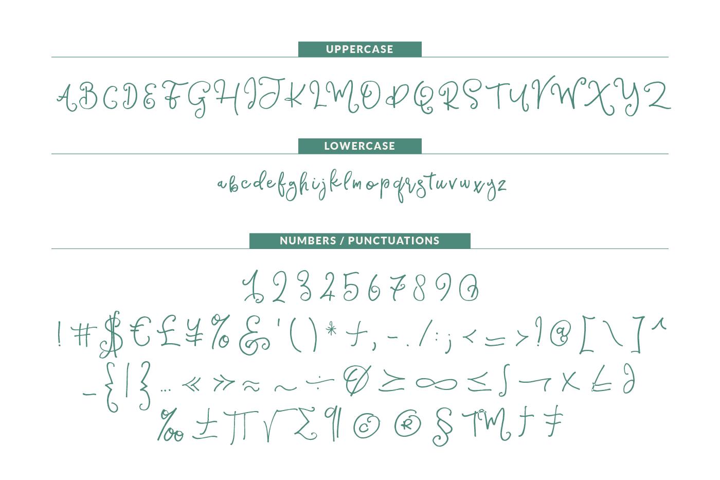 Sparkling Script Font example image 8