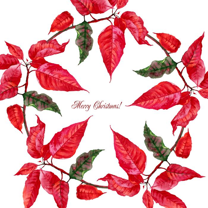 Christmas Poinsettia example image 4