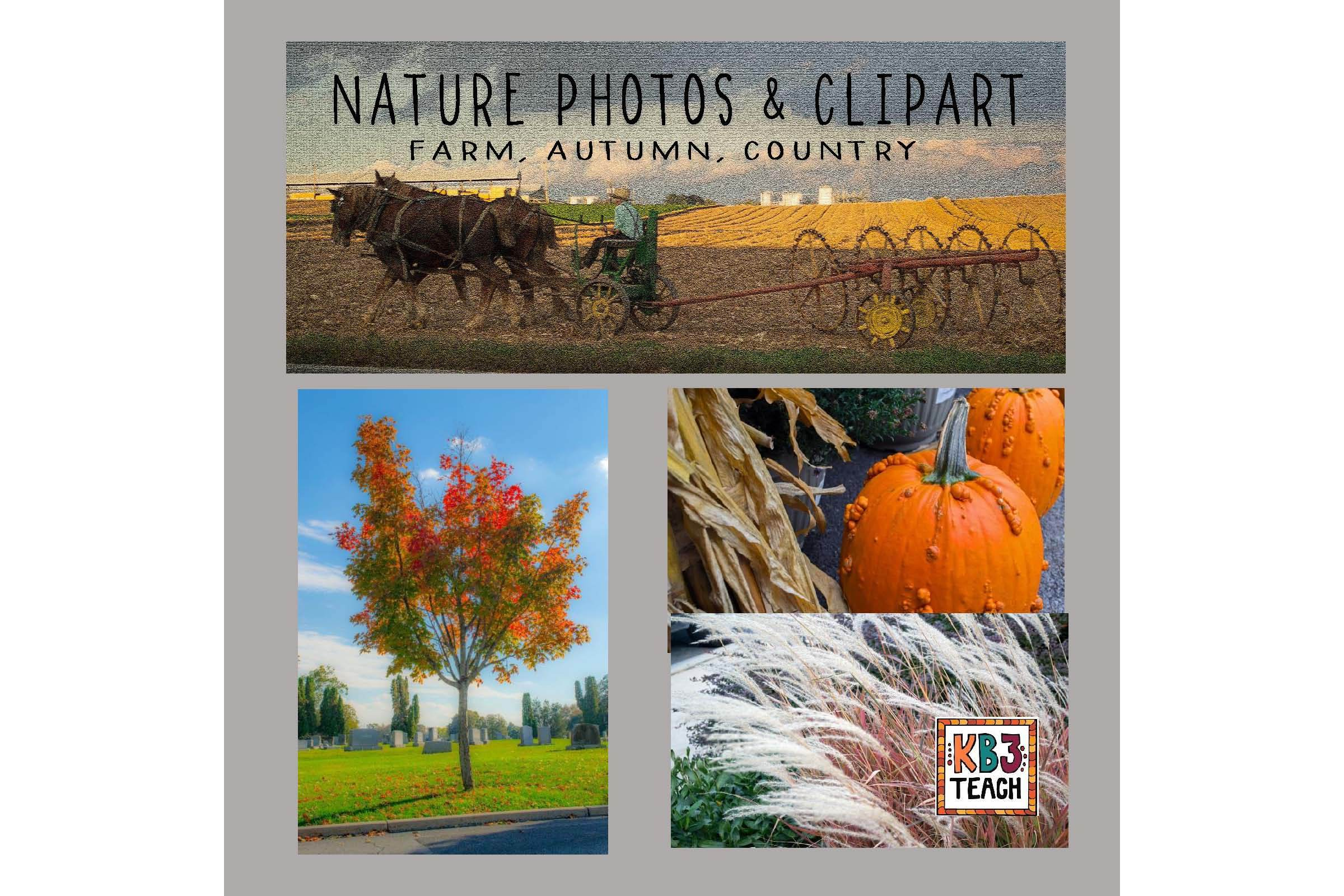 Country, Farm, Autumn/Fall Photos example image 2