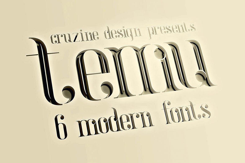 temu - Modern Font example image 3