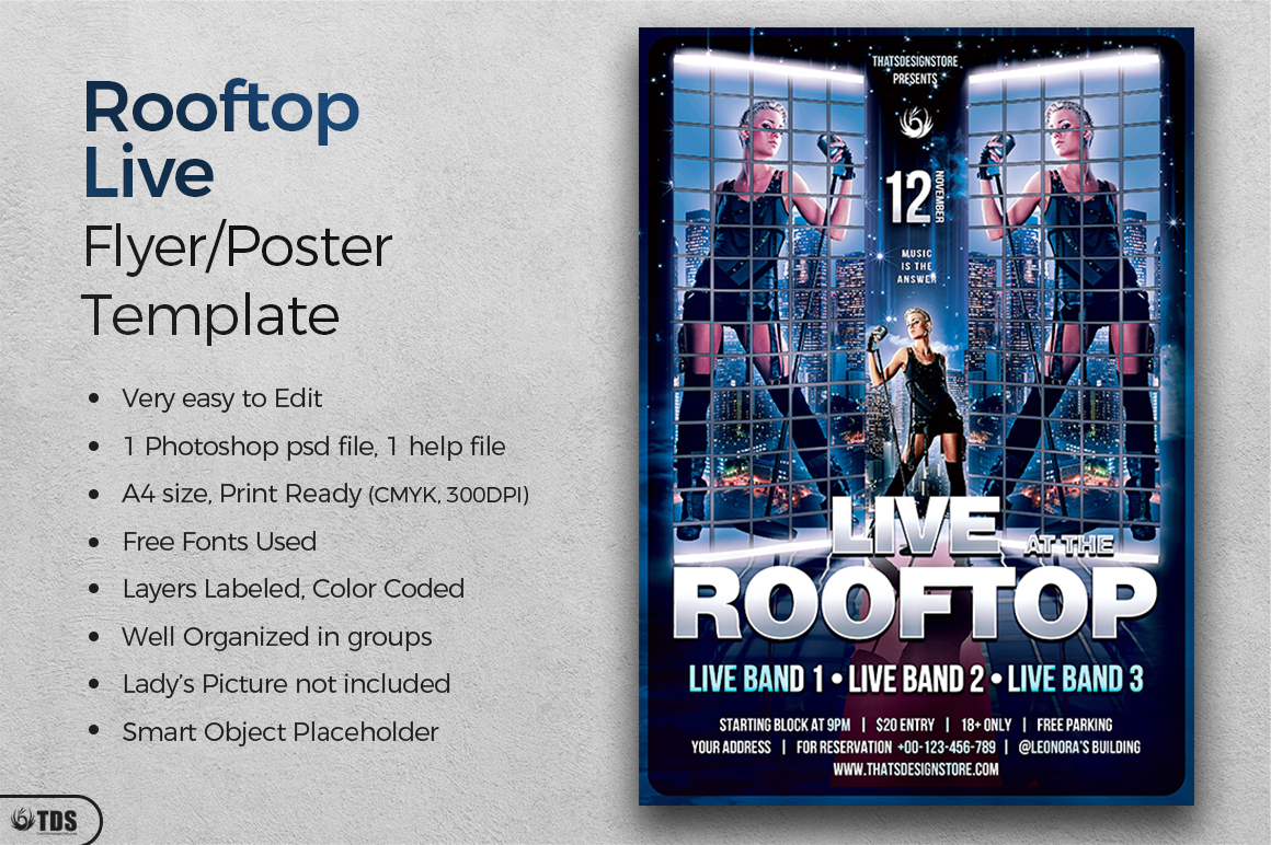 Rooftop Live Flyer Template example image 2