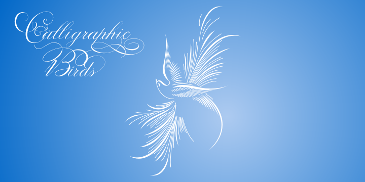 Calligraphic Birds Family Pack example image 4
