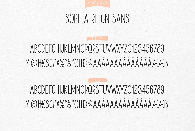 Signature font duo Sophia Reign example image 11