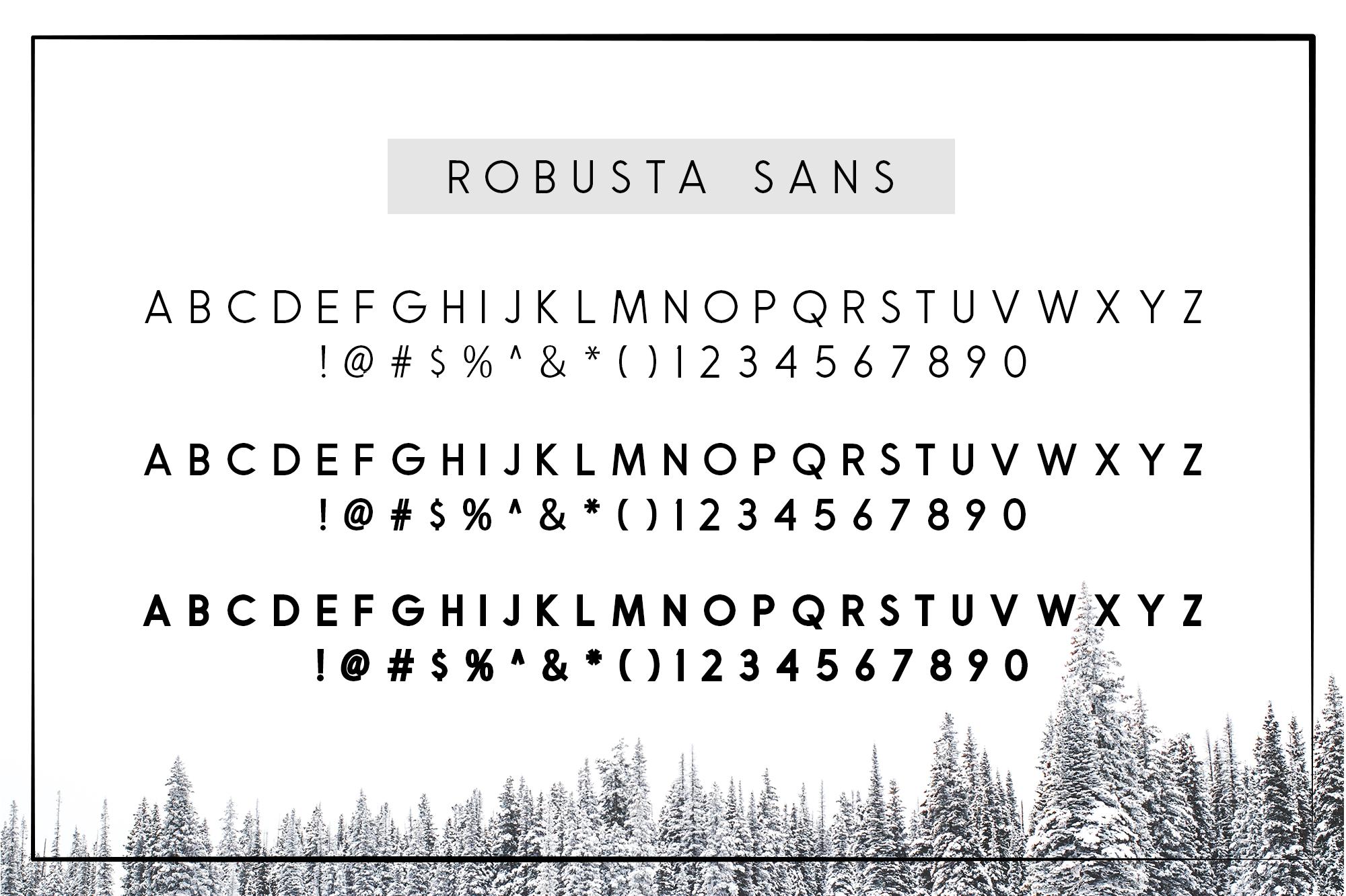 Robusta V.02 example image 8