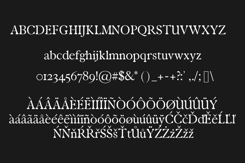 Zack Serif Typeface example image 4