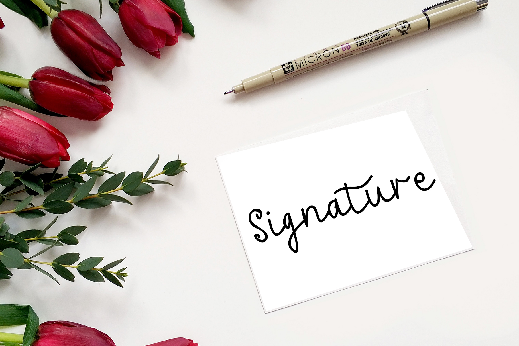 Anitta Script Font example image 7