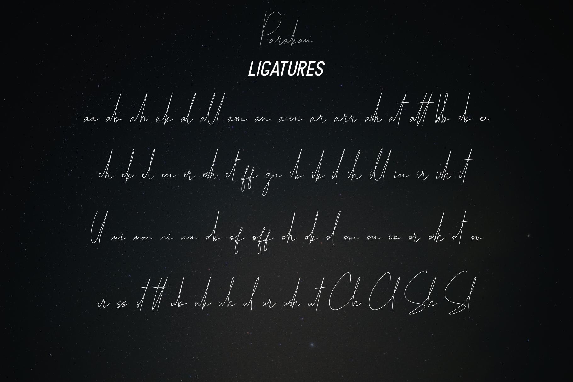 Parakan Script example image 7