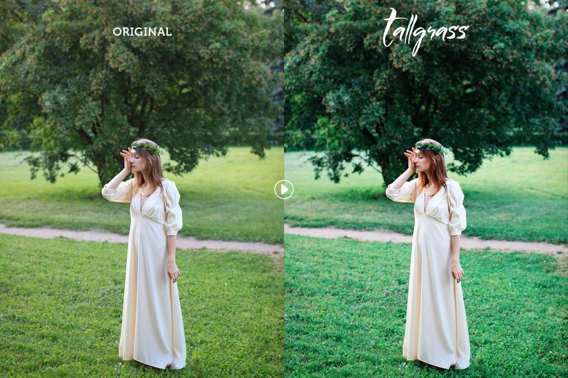 Tallgrass Photoshop Action example image 2