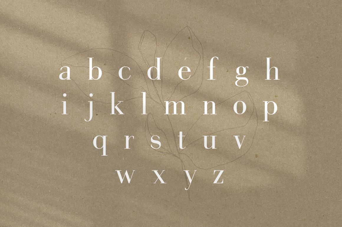 Gorgeous Serif Font example image 7