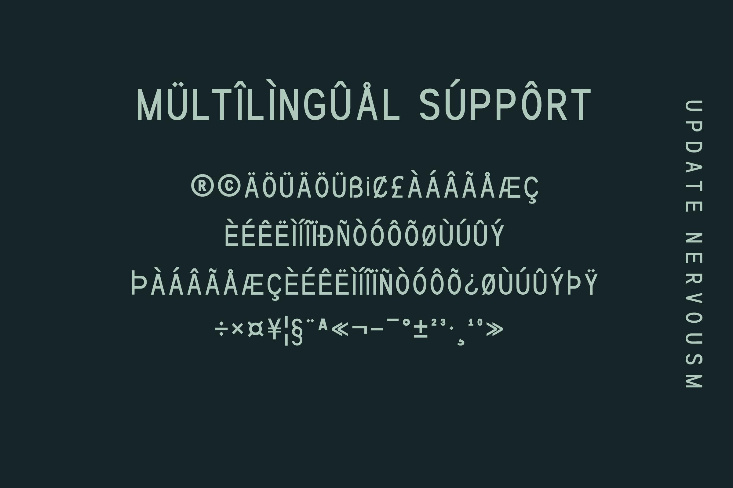 NERVOUSM Font UPDATE  Elegant San Serif Style example image 3