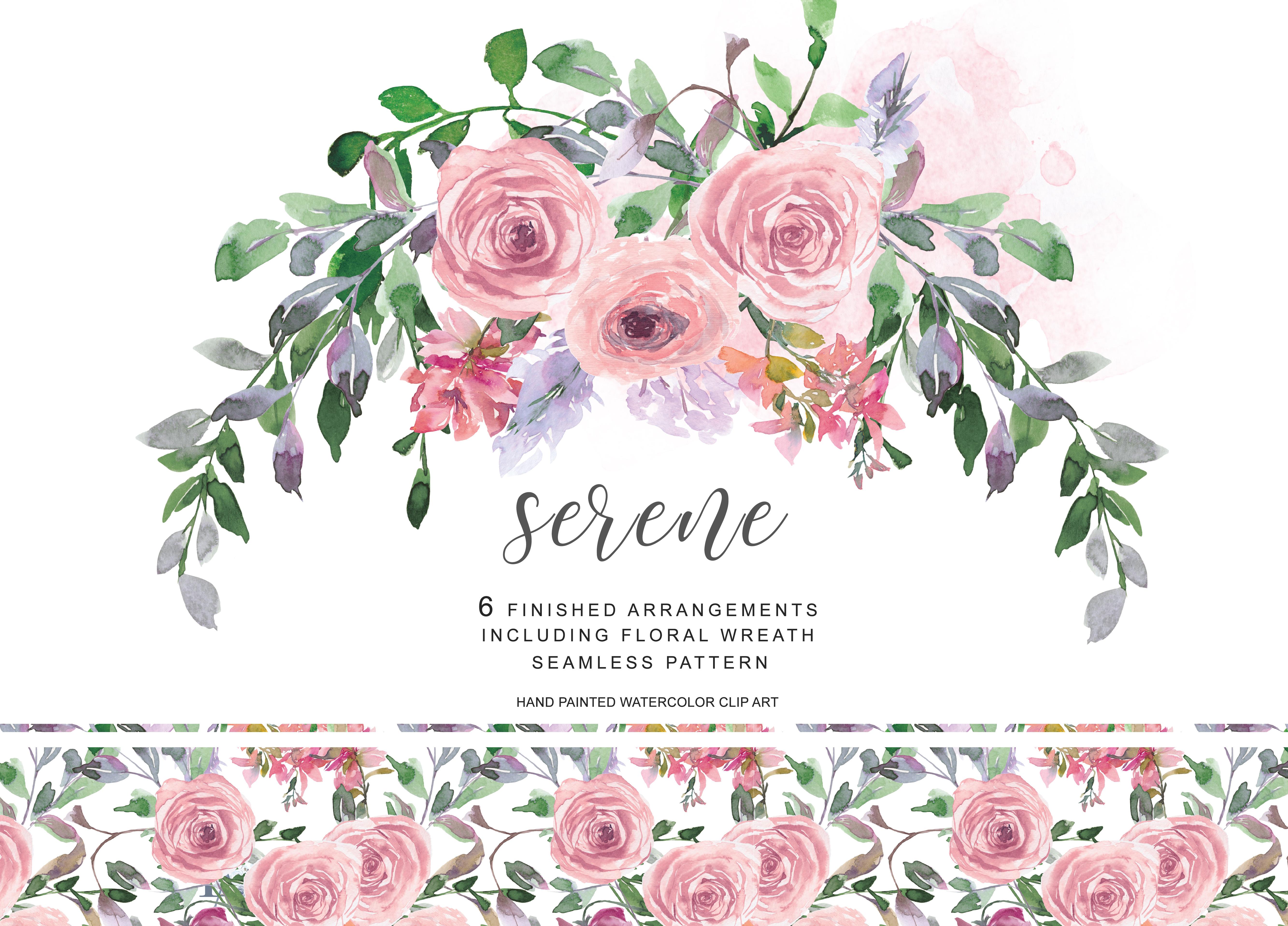Watercolor Romantic Blush Rose Clipart Blush Floral ...