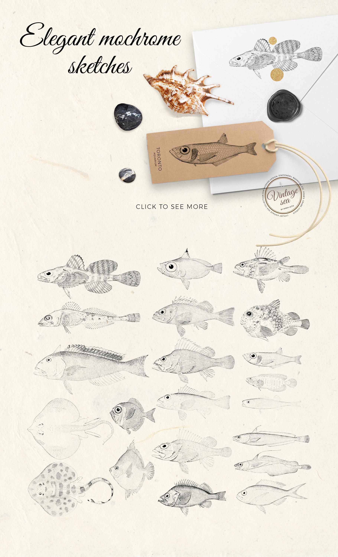 Vintage sea - nautical design set example image 5