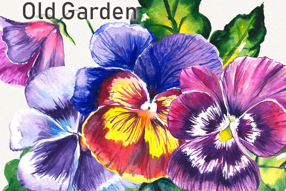 Garden clipart, spring clipart, garden tools,pansy clipart example image 5