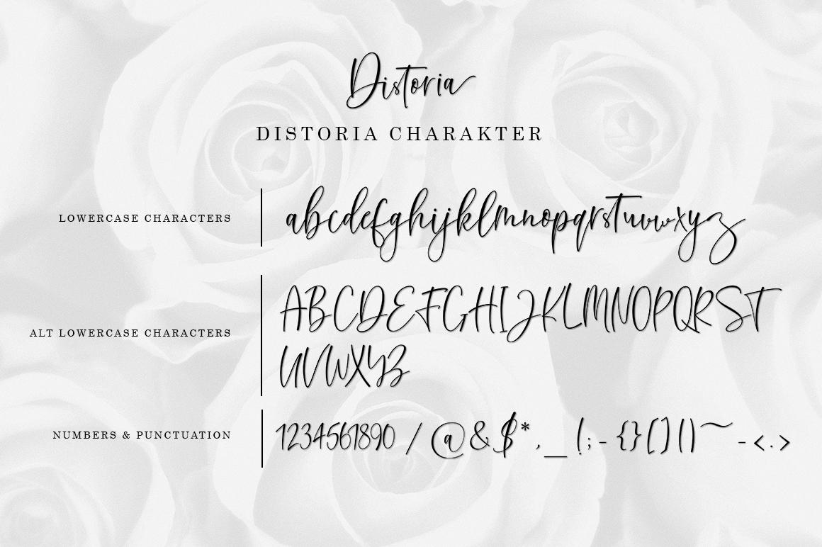 Distoria Signature Script example image 10