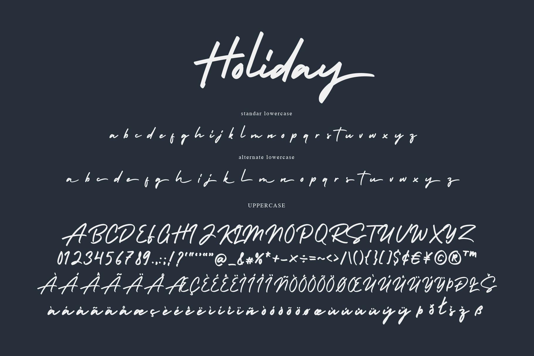 Holiday - Bold Signature Font example image 7