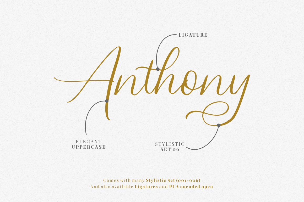 Swadery - Luxury Font example image 2