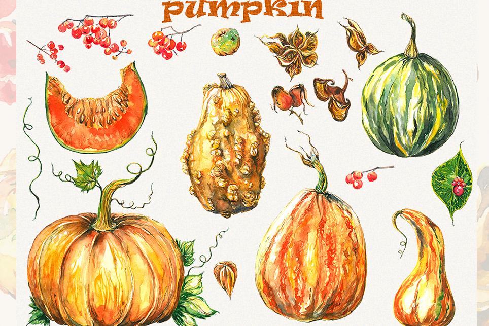Pumpkin clipart, pumpkins clipart, watercolor pumpkin example image 5