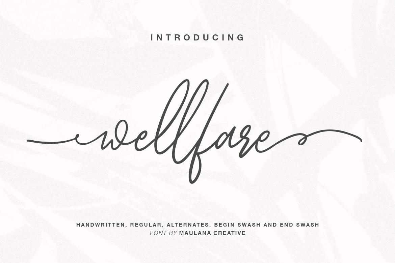 Wellfare - Handwritten Swash Font example image 1