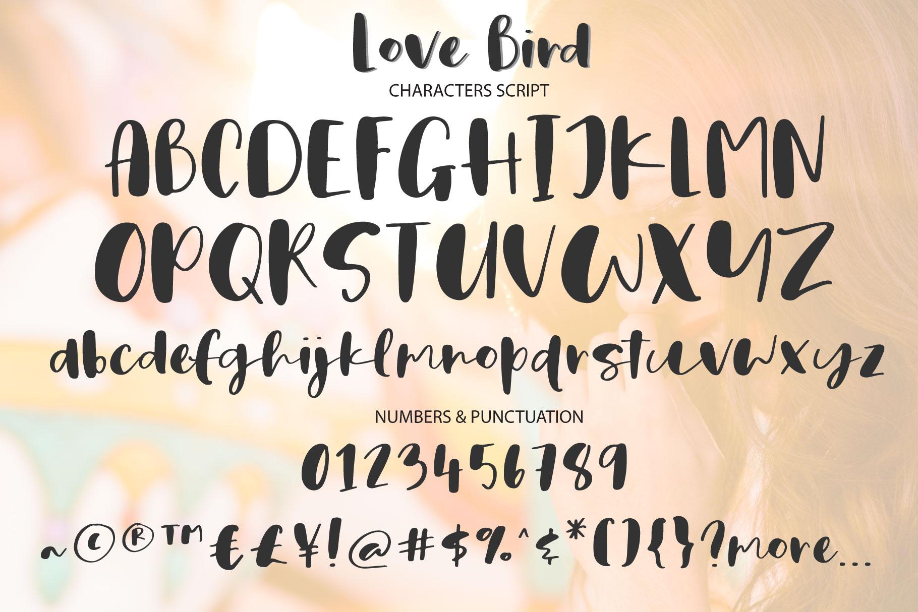 Love Bird example image 7