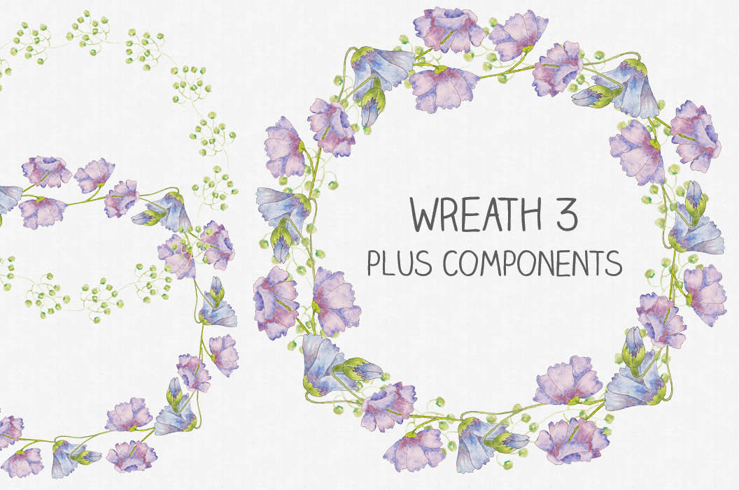 Watercolor clip art bundle of pinky blue Cornflowers example image 4