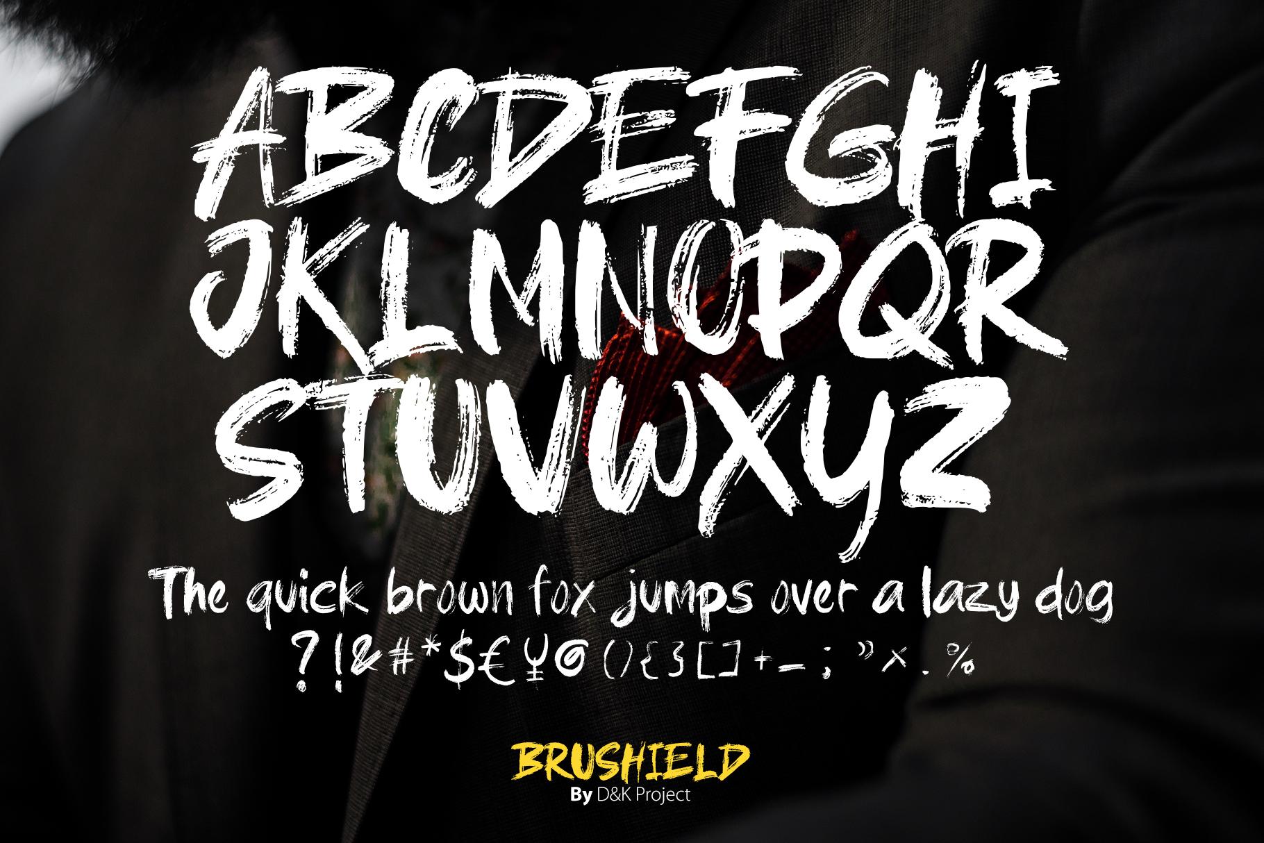 Brushield handwritten brush font example image 3