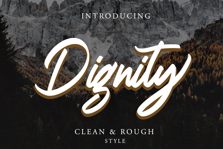 Dignity Brush Typeface example image 1