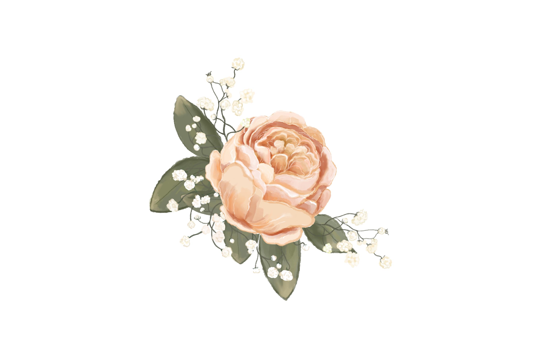 Elegant Wedding Flowers Png Jpeg Clip Art Illustrations