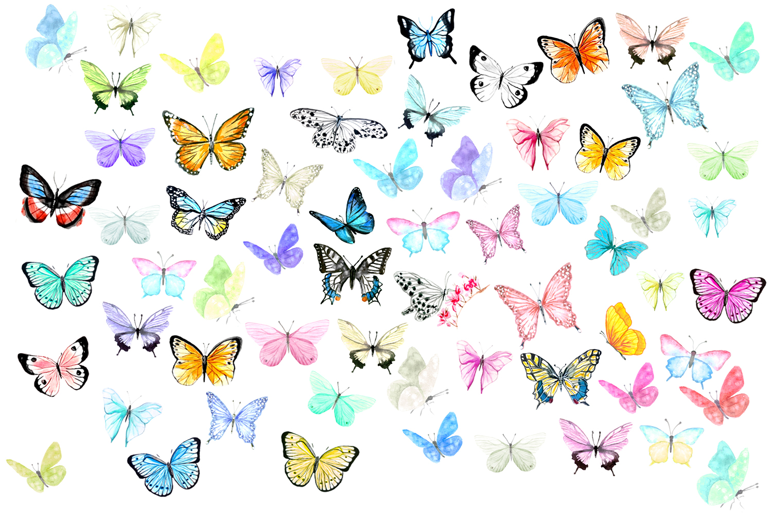 BIG Bundle Watercolor Butterflies example image 2