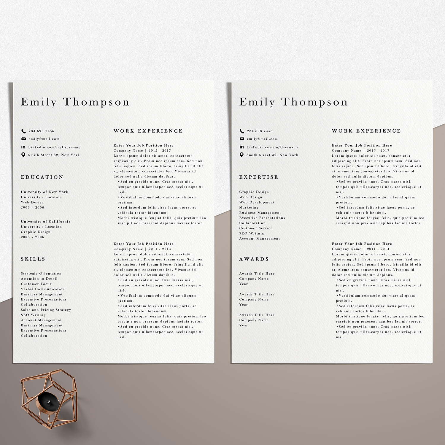 Resume Template | Photoshop CV Template - Emily example image 5