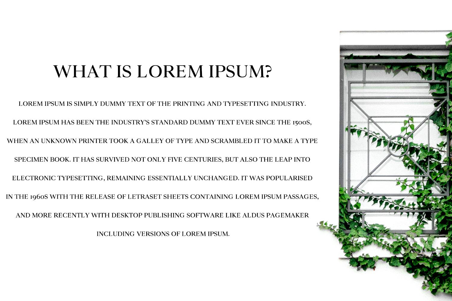 Wensley Modern Serif Font Family example image 5