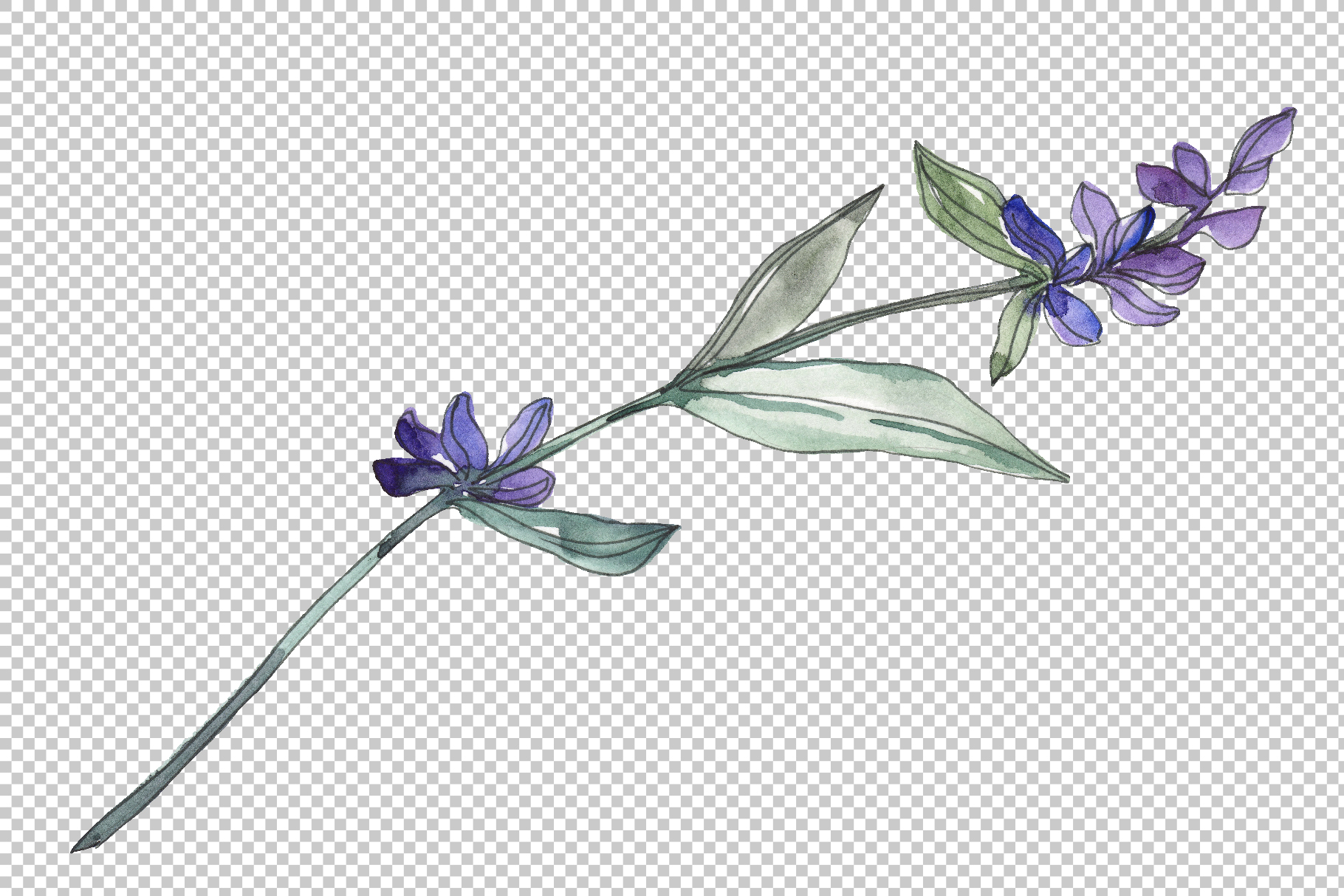 Bouquet summer breeze lavender watercolor png example image 6
